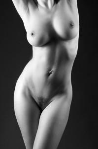 [torso]